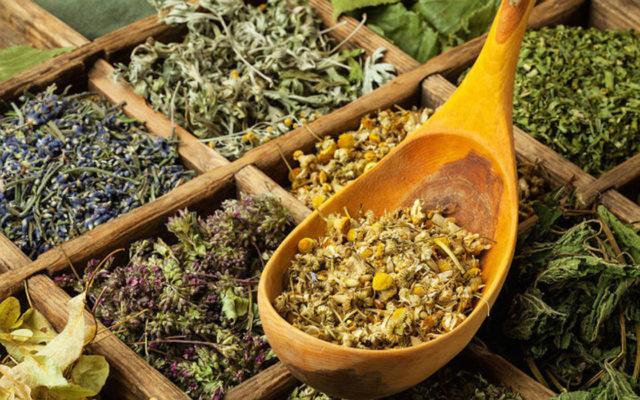 Лечебные свойства растений и специй