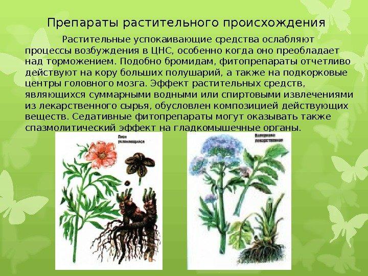 Растительные успокаивающие средства